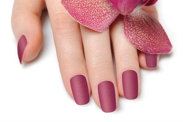 The nail art etiler