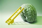 İnsan Beyni Hakkında Bilmediğiniz 43 Gerçek