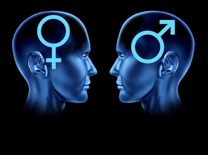Beyninizin Cinsiyetini Biliyor musunuz?(Test)