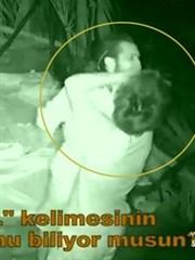 Berna Doğukan'a Saldırdı! (Video)