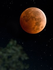 Yay Burcundaki Yeni Ay Burcunuzu Nasıl Etkiliyor?