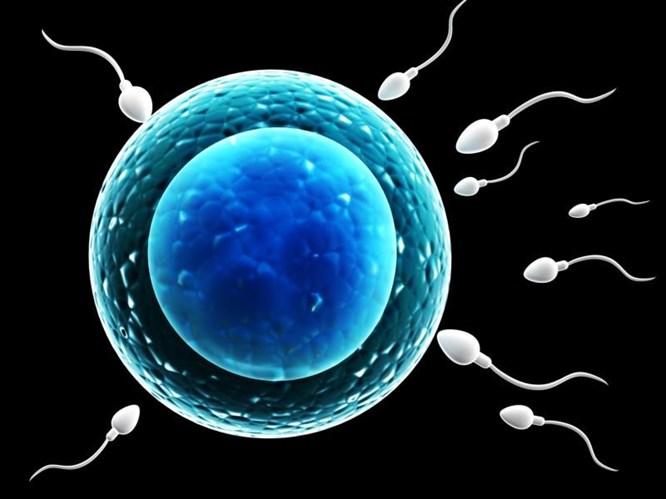 Sperm Sağlığı İçin Folik Asit Gereklidir!