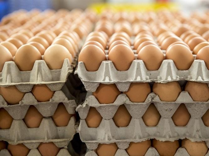 Pratik Bilgiler: Yumurtayı Buzdolabına Koymak Yanlış mı?