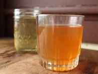 Kombu Çayı Nedir, Faydaları Nelerdir?