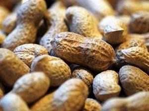 Et Yemeden Protein Alabileceğiniz 6 Besin Kaynağı
