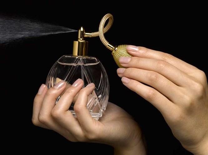 A'dan Z'ye Parfüm Tutkusu