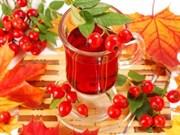 Kuşburnu Çayı İçmeniz İçin 9 Önemli Neden!