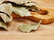 Eve Sinen Yemek Kokusundan Nasıl Kurtulabiliriz?