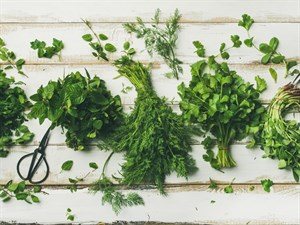 Kilo Vermenizi Sağlayacak 5 Yeşillik