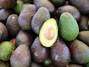 Avokado Nasıl Olgunlaştırılır?