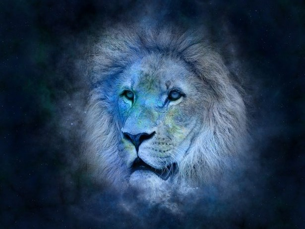 Картинки по запросу lion in blue-leo zodiac horoscope journal: 150 page lined notebook/diary